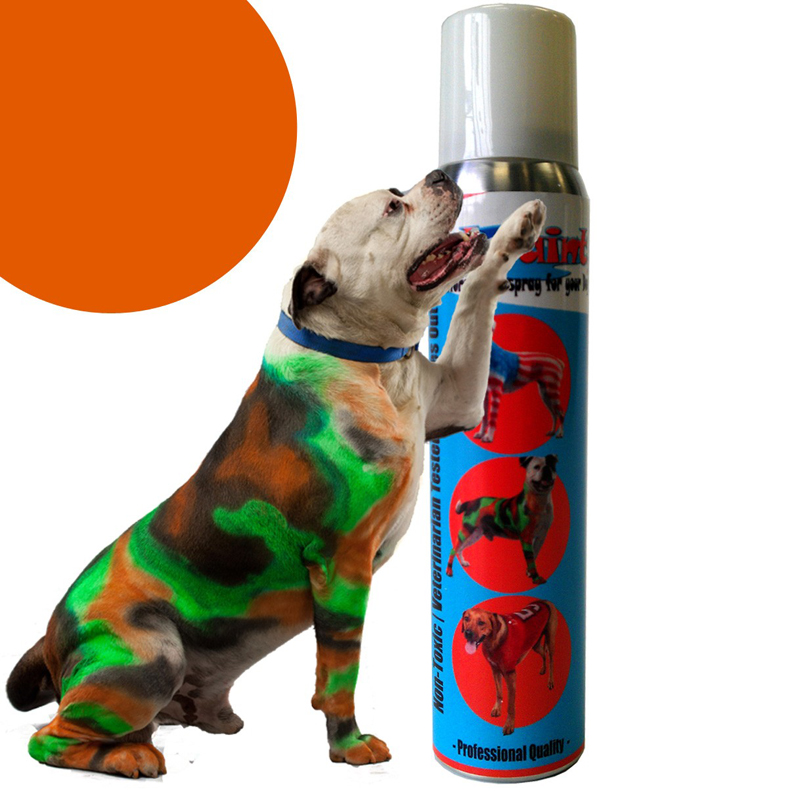 PetPaint Color Dog Hair Spray - Old Dog Orange with Same Day ...