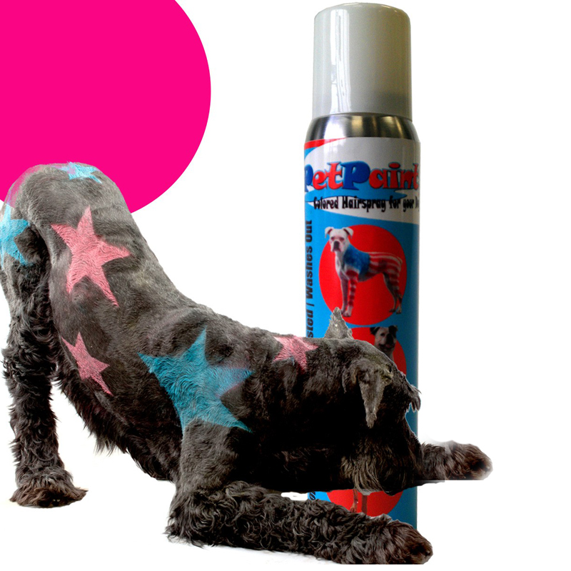 PetPaint Color Dog Hair Spray - Poodle Pink with Same Day Shipping ...