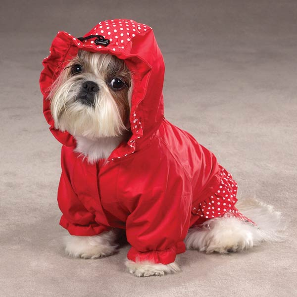 Polka Dots and Ruffles Raincoat - Red