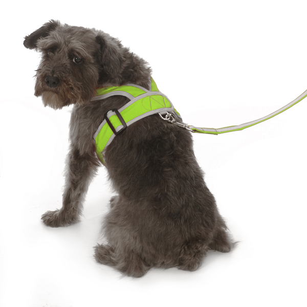 Precision-Fit Nylon Dog Harness - Lime Green
