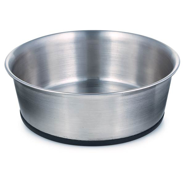 What Size Dog Bowl To Get