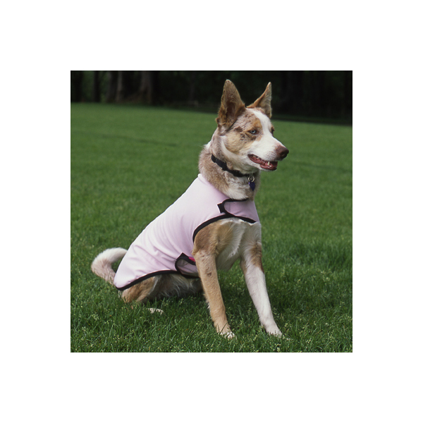 Rain Paw Dog Rain Jacket - Pink