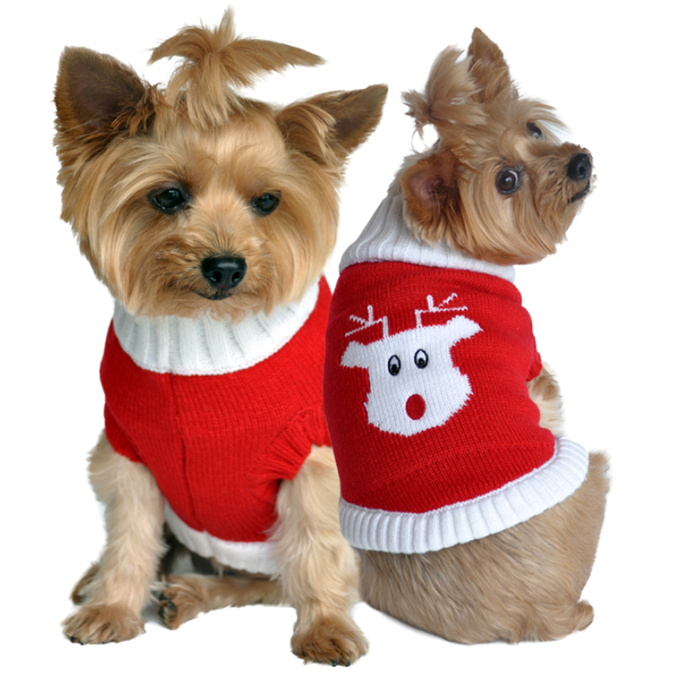 Red Rudolph Holiday Dog Sweater With Same Day Shipping