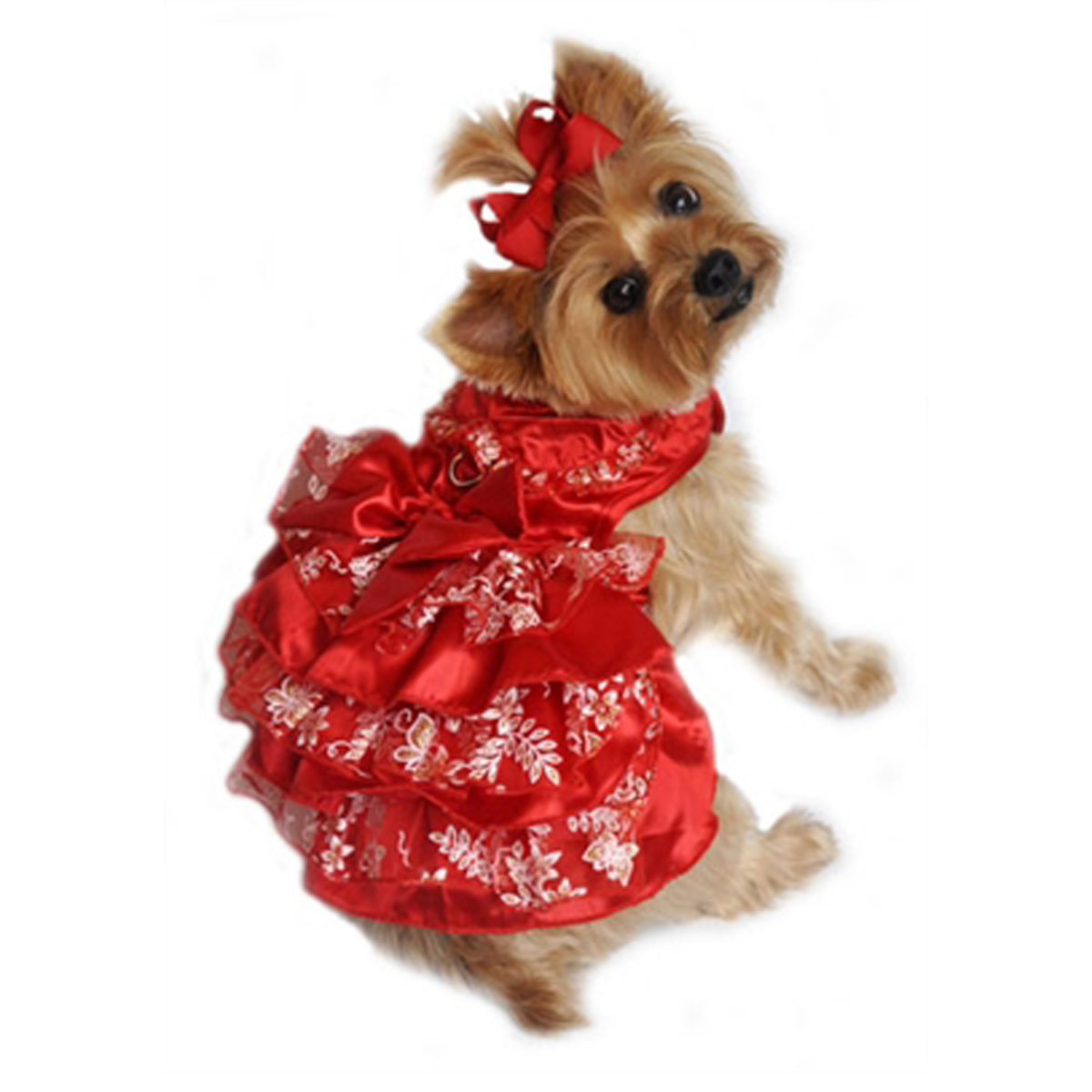 Red, White and Gold Organza Dog Dress