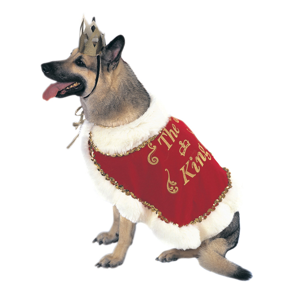 Royalty Dog Halloween Costume - King