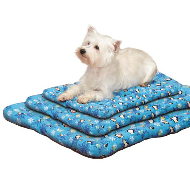 Slumber Pet North Pole Pals Canvas Pet Mat