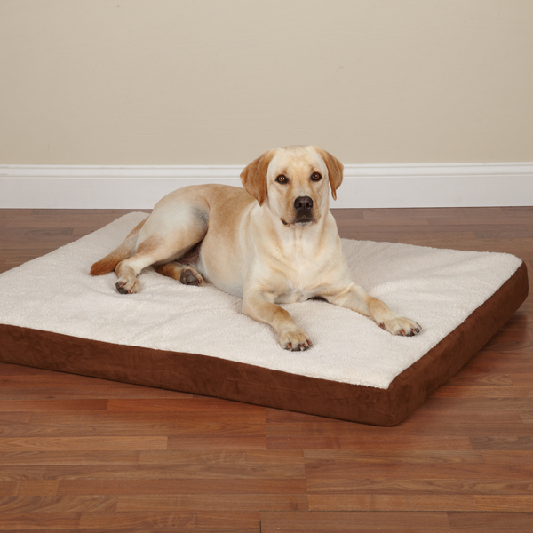 Slumber Pet Orthopedic Memory Foam Dog Bed - Brown