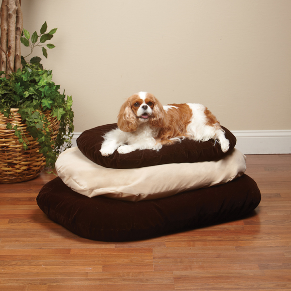 Slumber Pet Therapeutic Memory Foam Oval Bed - Warm Sand