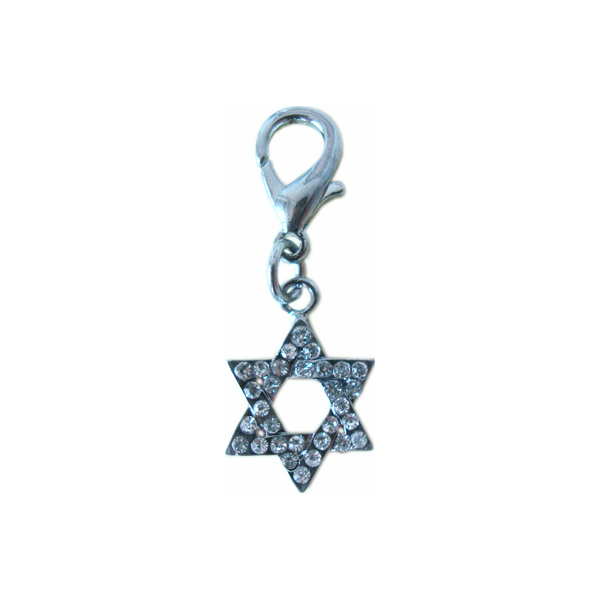 Star of David Collar Charm
