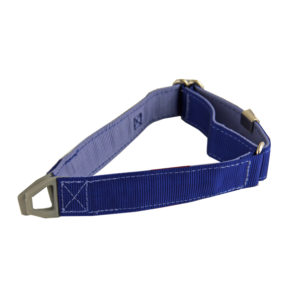 Tazlab Safe-T Stretch Adjustable Dog Collar - New River Blue