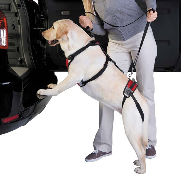 Total Pet Health Lift & Go Dog Leads - Red