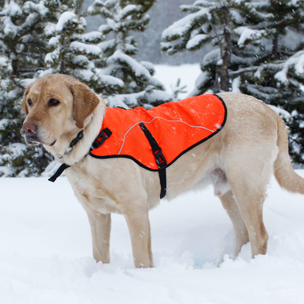 Track Safety Dog Jacket by RuffWear - Blaze Off