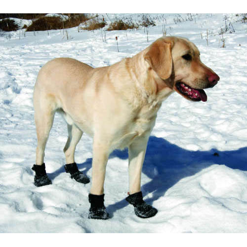 Ultra Paws TrAction Dog Boots Black With Same Day Shipping - Dog shoes for hardwood floors
