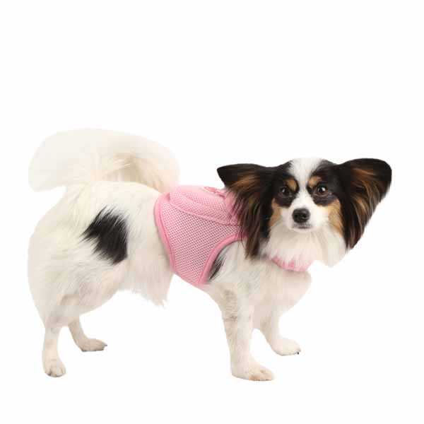 Vera Pinka Dog Harness by Pinkaholic - Pink