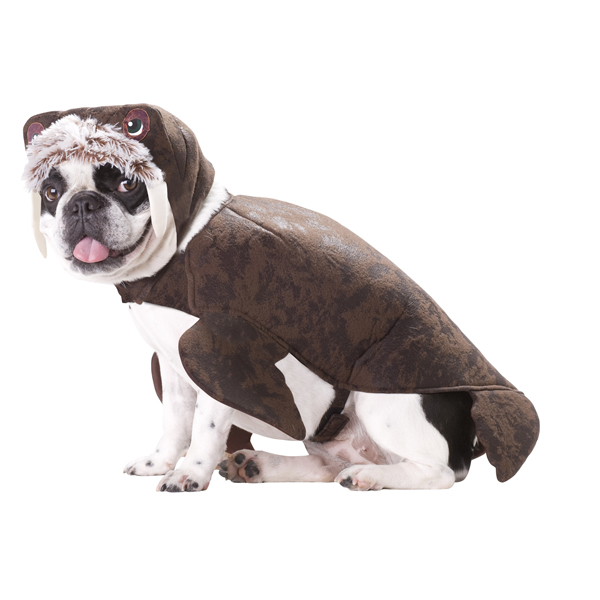 Walrus Dog Costume
