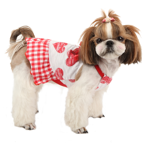 Witty Dog Dress by Puppia - Red