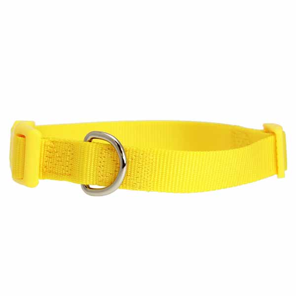 Nylon Dog Collar by Zack & Zoey - Yellow