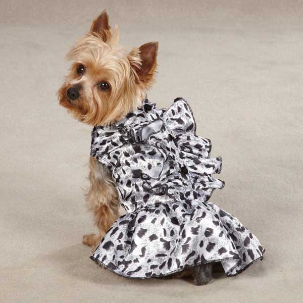 Zack & Zoey Snow Leopard Satin Dog Dress