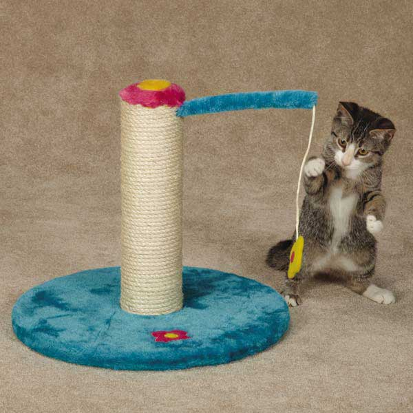 Zanies Blooming Brights Cat Scratch Post