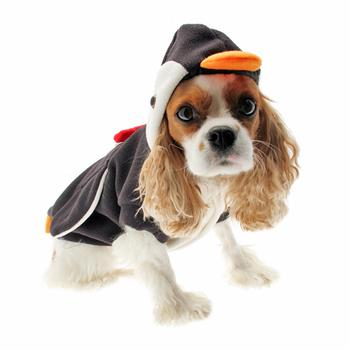 Penguin Dog Costume  sc 1 st  Pet Retail Supply & Special Occasions at Pet Retail Supply