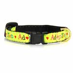 View Image 2 of Adopted Cat Collar by Up Country