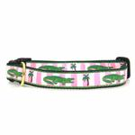 Alligator Dog Collar by Up Country