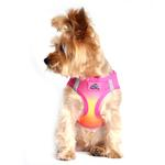 American River Choke-Free Dog Harness - Raspberry and Orange Sorbet Ombre