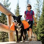 View Image 1 of Approach Dog Pack by RuffWear - Campfire Orange