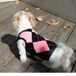 View Image 1 of Argyle Sleeveless Dog Sweater by Gooby - Pink