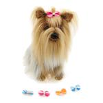 View Image 3 of Aria Grosgrain Stripe Dog Bows