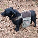 View Image 2 of Aussie Naturals Cotton Dog Backpack