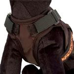 View Image 2 of Avant Garde Dog Harness - Animal