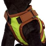 View Image 2 of Avant Garde Dog Harness - Greenday