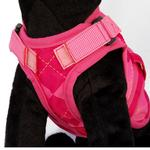 View Image 2 of Avant Garde Dog Harness - Prep