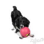 View Image 1 of Ball in Ball Dog Toy