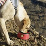 View Image 3 of Bivy Travel Dog Bowl By RuffWear - Red Currant