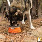 View Image 2 of Bivy Travel Dog Bowl By RuffWear - Campfire Orange