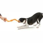 View Image 2 of Bumi Dog Toy - Orange