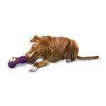 View Image 1 of Busy Buddy The Chuckle Dog Toy