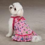 View Image 1 of Butterfly Garden Dog Dress - Pink