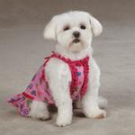 View Image 4 of Butterfly Garden Dog Dress - Pink