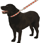 View Image 1 of Candy Cane Christmas Holiday Ribbon Collars