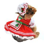 View Image 1 of Candy Cane Cutie Dog Costume