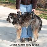 View Image 7 of CareLift Pet Lifting Harness - Full Body