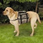 View Image 1 of Casual Canine Digital Camo Day Tripper Dog Backpack