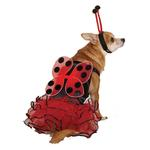 View Image 1 of Casual Canine Lucky Bug Dog Costume