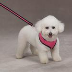 View Image 1 of Casual Canine Mesh Dog Harness - Pink