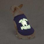 View Image 3 of Casual Canine Mind Your Mummy Dog T-Shirt - Blue
