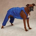 View Image 1 of Casual Canine Nylon Dog Snow Bib - Nautical Blue