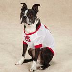 View Image 3 of Play Ball Dog Jersey - Beantown White